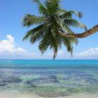 Как отдохнуть на Сейшелах — отдых на Сейшелах всей семьёй