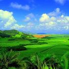 Как отдохнуть в Маврикии — отдых в Маврикии всей семьёй