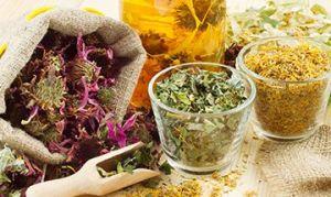 Основные секреты лечения травами