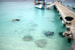 Как отдохнуть на Мальдивах – отдых на Мальдивах всей семьей.