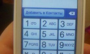 Как узнать свой номер Билайн.