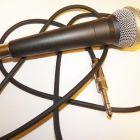 Как стать певицей.