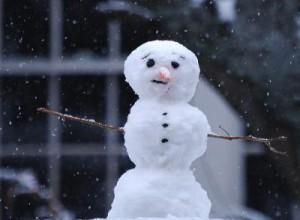 Черты лица снеговика