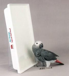 Обогреватель, безопасный для попугая